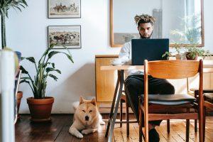 5 Tips for Balancing Entrepreneurship With Pet Ownership
